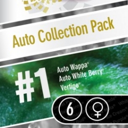 Auto Collection Pack Nr. 1 | Feminised, Auto, Indoor & Outdoor
