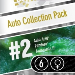 Auto Collection Pack Nr. 2 | Feminised, Auto, Indoor & Outdoor