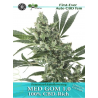CBD Med Gom 1.0 | Feminised, Auto, Indoor & Outdoor