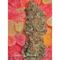 Fruitylicous | Feminised, Indoor & Outdoor