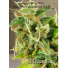 Tasman Haze | Indoor & Outdoor
