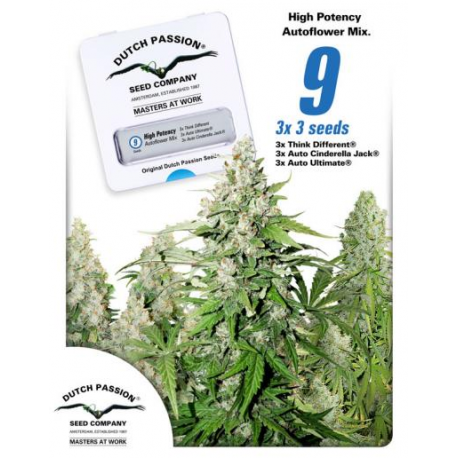 High potency auto mix feminised auto indoor outdoor for Autofloraison interieur