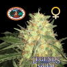 Legends Gold | Feminised, Indoor & Outdoor