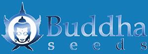 buddhaseedbank.com