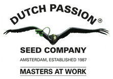 dutch-passion.com