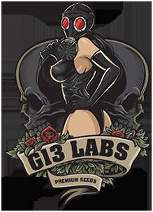 g13labs.com
