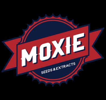 moxie710.com