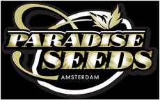 paradise-seeds.com