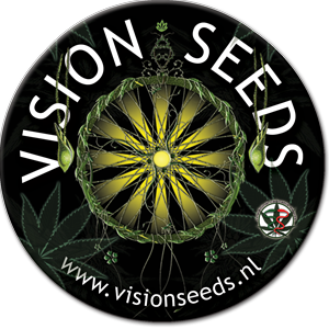 visionseeds.nl