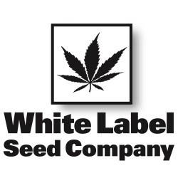 whitelabelseeds.com